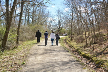 Cuatro personas de excursion por el bosque
