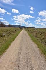Largo camino recto bajo el sol de primavera