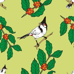 Red-whiskered bulbul bird and coffee limb wallpaper Seamless