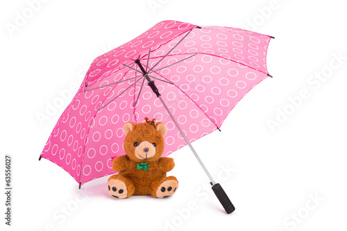 Teddy Beear Under Umbrella