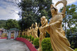 Ten Thousand Buddhas Monastery, HK
