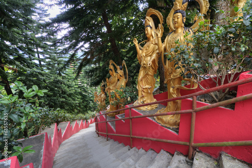 Ten Thousand Buddhas Monastery Steps, HK