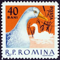 Duck (Romania 1963)