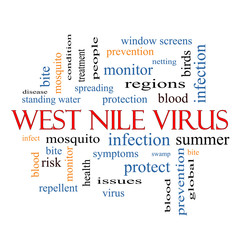 West Nile Virus Word Cloud Concept