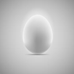 Egg Realistic Vector Illustration
