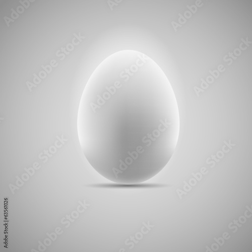Egg Realistic Vector Illustration