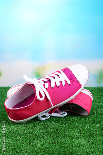 Beautiful gumshoes on green grass, on bright background