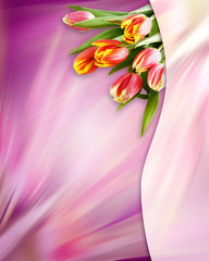 Abstract pink background with tulip flowers