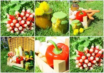 composition de légumes frais