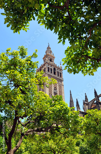 Giralda tower, Patio de los Naranjos, Seville, Andalucia, Spain