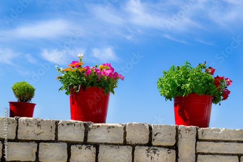 Flower pot with sky in background