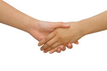 Business handshake between business people