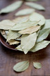 Close-up of dried bay leaves, shallow depth of field