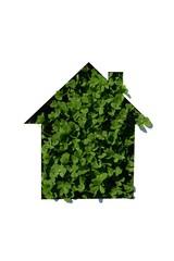 house symbol on clover