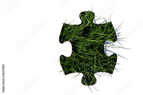 jigsaw puzzle on grass