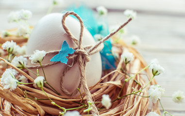 Easter egg in nest, rustic easter card,background, toned