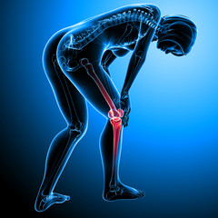 Anatomy of female knee pain on blue