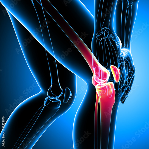 Anatomy of knee pain on blue