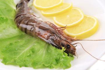 Close up of whole raw shrimp.
