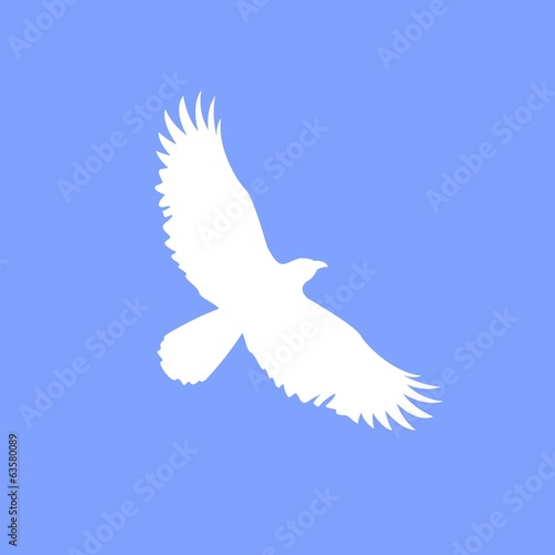 Vector white eagle