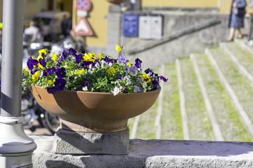 Floral decoration on a city street color image