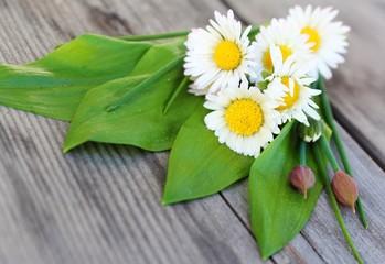 bärlauch und gänseblumen