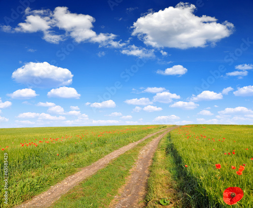 Road in wheat field