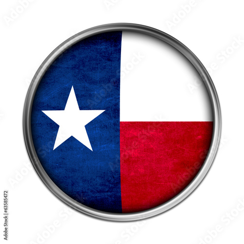 Texas flag button