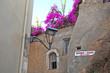 Постер, плакат: Комнаты в аренду в старом городе Ханья Крит Греция