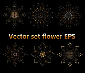 Vector set flower EPS