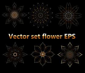 Vector set flower EPS