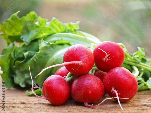 Radish and lettuce on wooden background