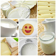 dairy products collage