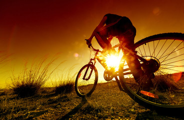 Dreamy sunset and healthy life.Fields and bicycle
