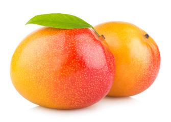 mango fruits isolated on white background