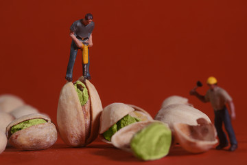 Construction Workers in Conceptual Food Imagery With Pistachio N