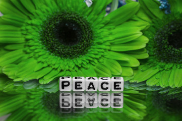 Peace text message with green flowers