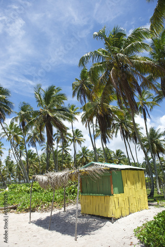 Brazilian Beach Shack Palm Trees Bahia Brazil