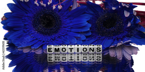 Emotions message with two blue flowers