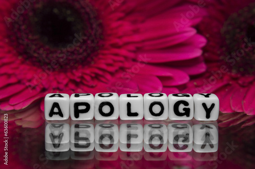 Apology with pink flowers
