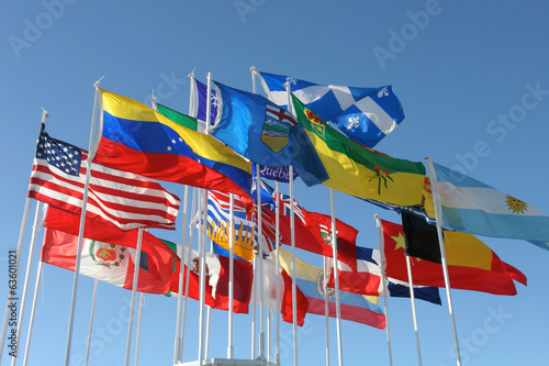 Flags from all Canadian provinces and some International