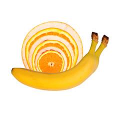 Schnecke aus Obst und Gemüse