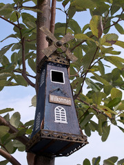 Birdhouse in tree