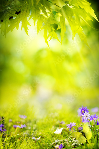 art spring landscape background