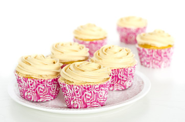 Several cupcakes on white background