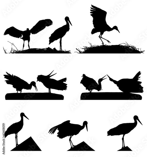 White Storks on the nest silhouette