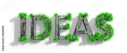 Wooden Ideas word with green grass growth isolated