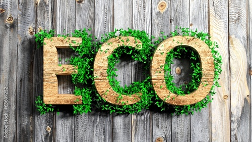 Wooden Eco word with vegetation growth on wooden background