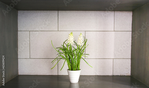 white flower and green decoration in white vase