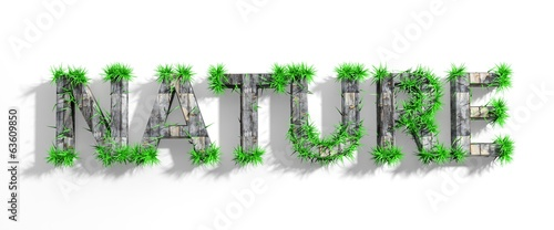 Wooden Nature word with green grass growth isolated
